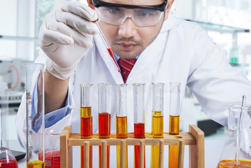 Ερευνητής που κάνει τη χημική δοκιμή στοκ εικόνες με δικαίωμα ελεύθερης χρήσης