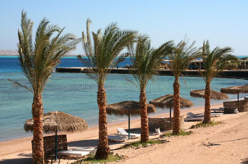 Ερυθρά Θάλασσα hurghada παραλιών στοκ φωτογραφία με δικαίωμα ελεύθερης χρήσης