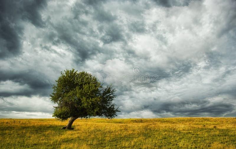ερχόμενη θύελλα στοκ εικόνες