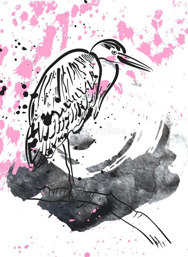 Ερωδιός στους παφλασμούς watercolor στο άσπρο υπόβαθρο ελεύθερη απεικόνιση δικαιώματος
