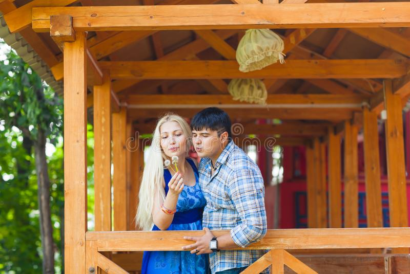 Ερωτευμένη φυσώντας πικραλίδα ζεύγους μια θερινή ημέρα στοκ φωτογραφία με δικαίωμα ελεύθερης χρήσης