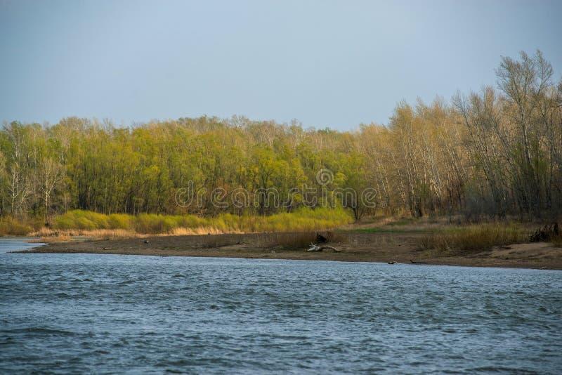 Ερωτευμένοι περίπατοι ζευγών στο θυελλώδη καιρό από την άλλη πλευρά του ποταμού Ural στοκ εικόνες