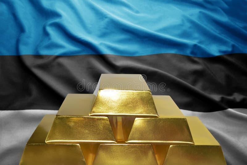 Εσθονικές χρυσές επιφυλάξεις στοκ φωτογραφίες με δικαίωμα ελεύθερης χρήσης