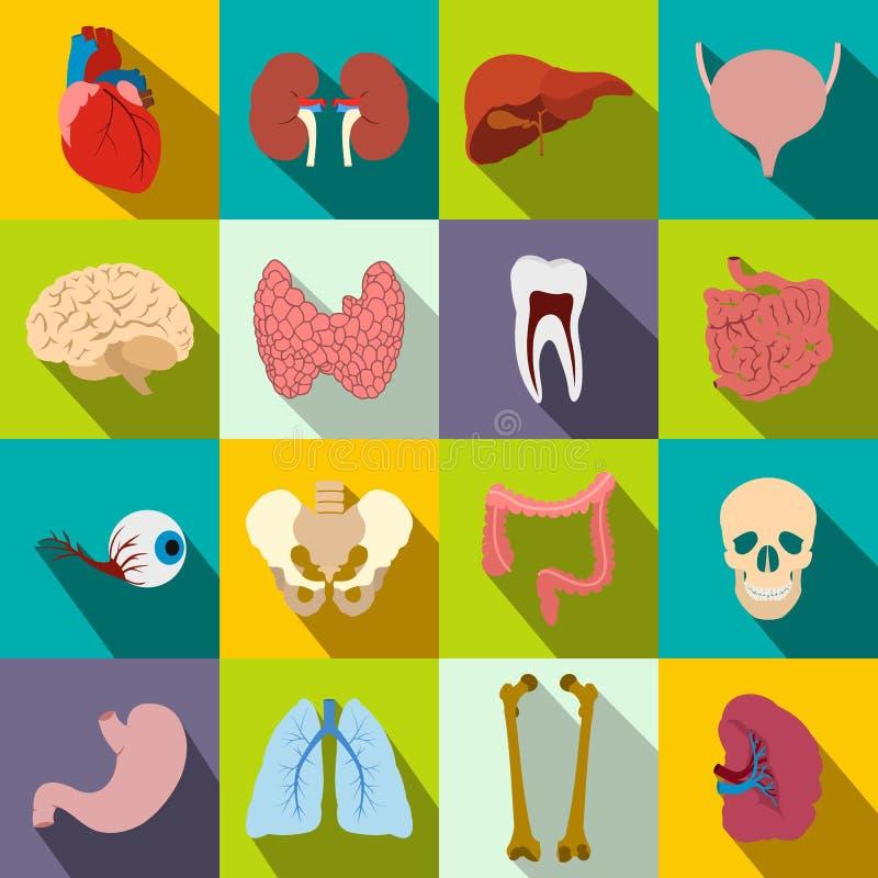 Εσωτερικά επίπεδα εικονίδια οργάνων διανυσματική απεικόνιση
