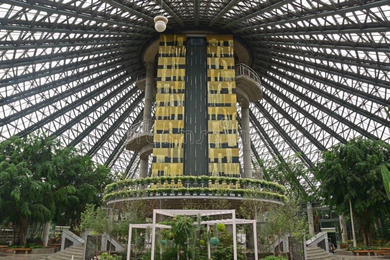 Εσωτερική δομή κήπων που οδηγεί στην πλατφόρμα παρατήρησης του βοτανικού κήπου Yeomiji στο νησί Jeju στοκ εικόνες
