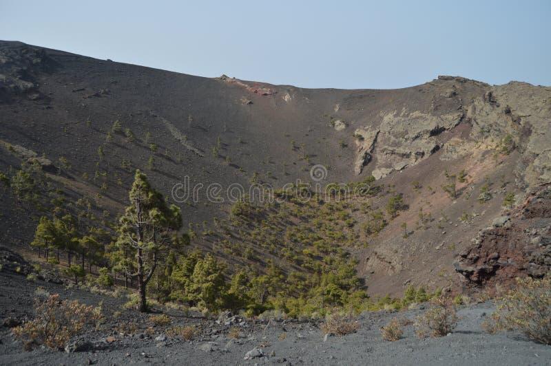 Εσωτερικός κρατήρας με ένα νέο δάσος πεύκων στο ηφαίστειο του San Antonio στο νησί φοινικών στα Κανάρια νησιά Ταξίδι, φύση, διακο στοκ φωτογραφίες