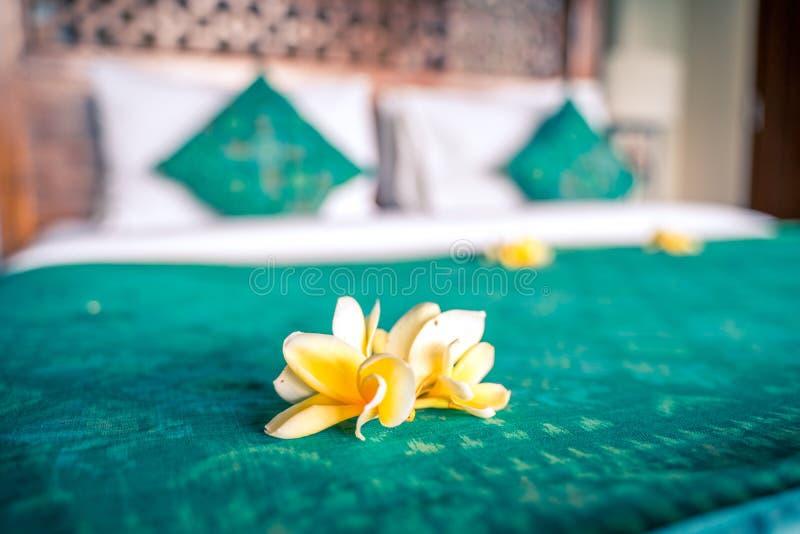 Εσωτερικό δωματίων ξενοδοχείων πολυτελείας Κρεβάτι που διακοσμείται με τα τροπικά λουλούδια πριν από την άφιξη φιλοξενουμένων στοκ φωτογραφία