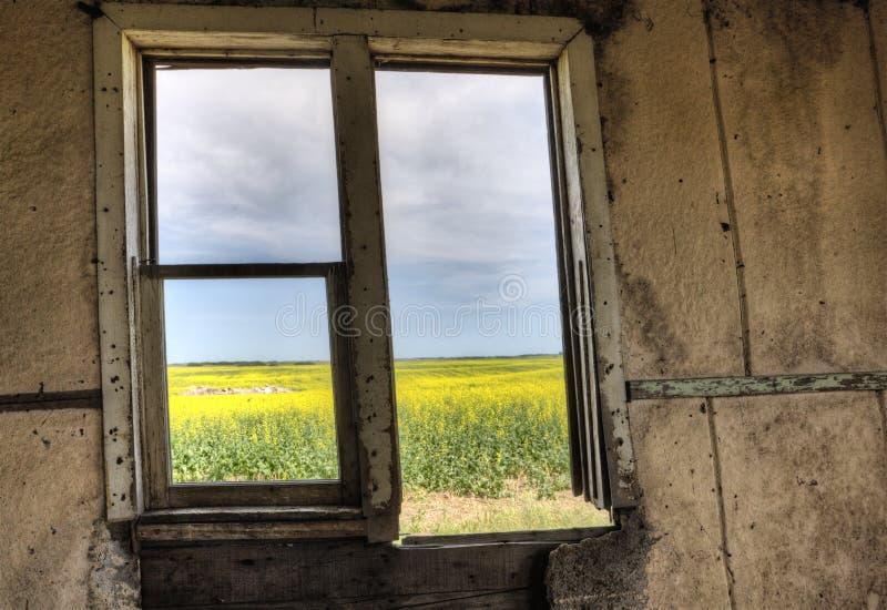 Εσωτερικό εγκαταλειμμένο σπίτι στοκ εικόνα