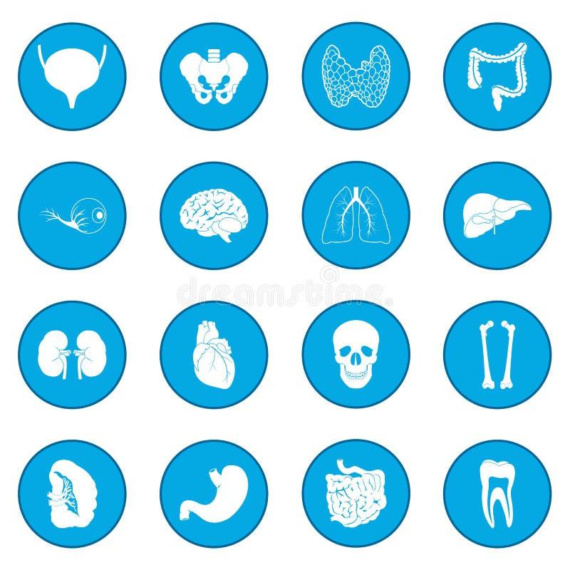Εσωτερικό μπλε εικονιδίων οργάνων ελεύθερη απεικόνιση δικαιώματος