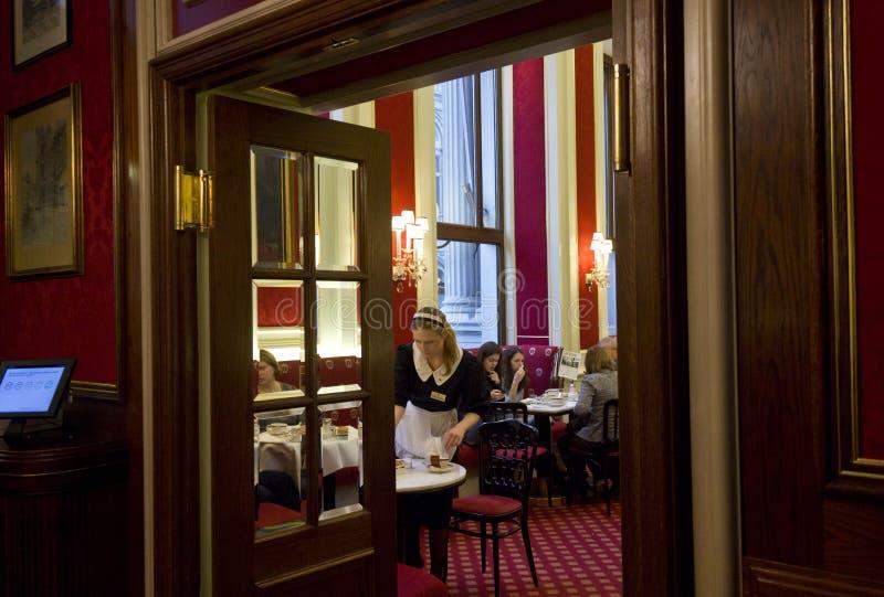 Εσωτερικό του διάσημου φραγμού ξενοδοχείων Sacher, με έναν σερβιτόρο στοκ φωτογραφίες με δικαίωμα ελεύθερης χρήσης