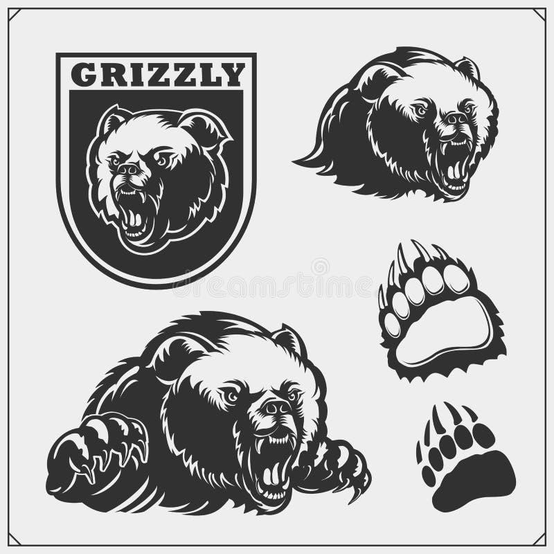 Ετικέτες, εμβλήματα και στοιχεία σχεδίου για την αθλητική λέσχη με τη σταχτιά αρκούδα ελεύθερη απεικόνιση δικαιώματος