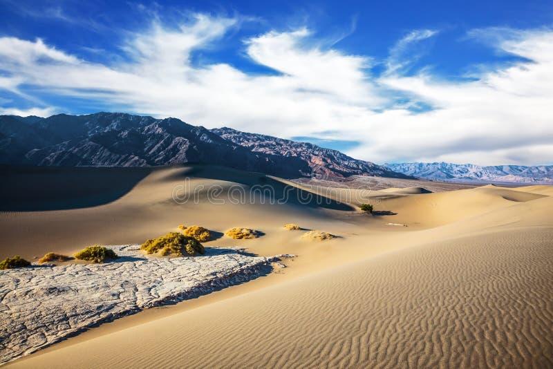 Ευγενείς κυματισμοί στους αμμόλοφους άμμου στοκ εικόνες με δικαίωμα ελεύθερης χρήσης