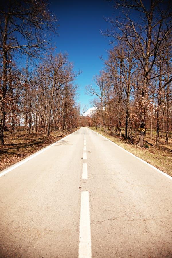 Ευθύς δρόμος στοκ φωτογραφίες
