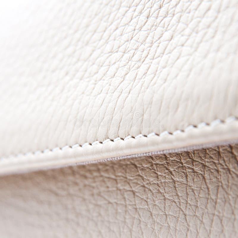 λευκό δέρματος στοκ φωτογραφία με δικαίωμα ελεύθερης χρήσης