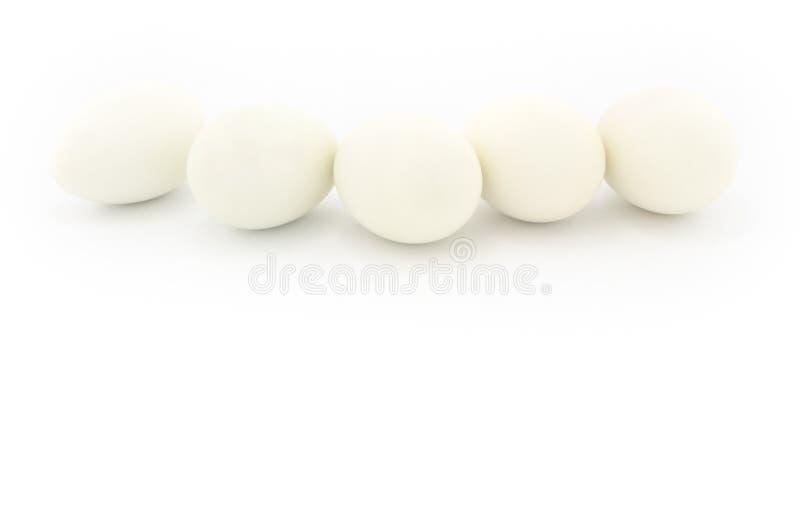 λευκό αυγών στοκ εικόνες