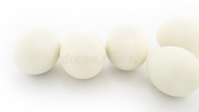 λευκό αυγών στοκ εικόνα με δικαίωμα ελεύθερης χρήσης
