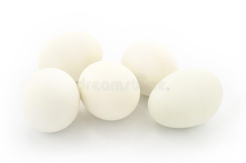 λευκό αυγών στοκ εικόνες με δικαίωμα ελεύθερης χρήσης