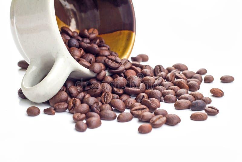 λευκό καφέ φασολιών ανασ& στοκ φωτογραφίες με δικαίωμα ελεύθερης χρήσης