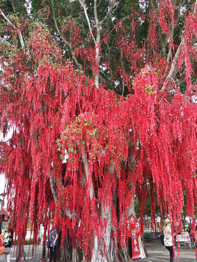 Ευμένος στα μηνύματα δέντρων τις καλές προσευχές κόκκινο δέντρο στοκ εικόνα με δικαίωμα ελεύθερης χρήσης