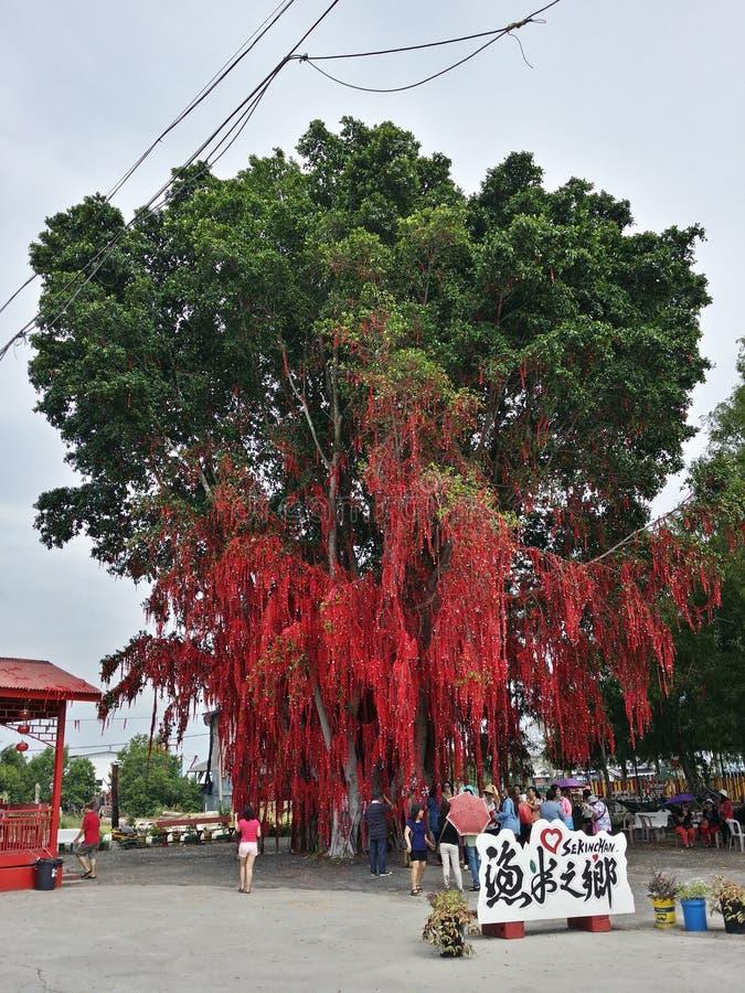 Ευμένος στα μηνύματα δέντρων τις καλές προσευχές κόκκινο δέντρο στοκ εικόνα