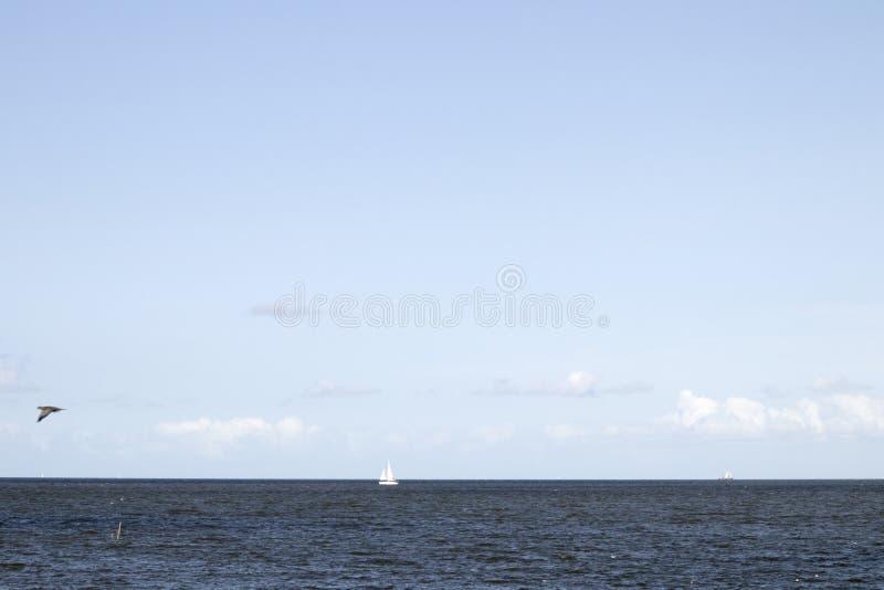 Ευρεία άποψη σχετικά με το IJsselmeer στοκ εικόνες