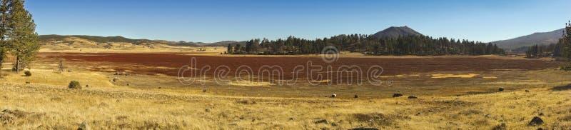 Ευρεία πανοραμική κομητεία του Σαν Ντιέγκο κρατικών πάρκων Rancho Cuyamaca τοπίων αμερικανικών πεδιάδων στοκ φωτογραφίες