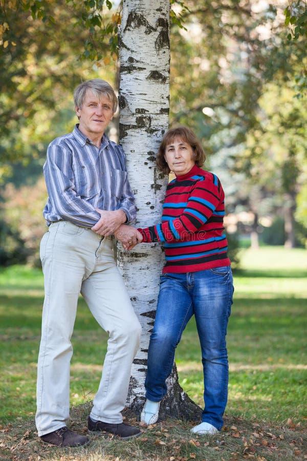 Ευρωπαίοι συνταξιούχοι άνδρας και γυναίκα που στέκονται κοντά στο δέντρο σημύδων σε ένα δασικό πλήρες μήκος φθινοπώρου κράτημα χε στοκ φωτογραφία με δικαίωμα ελεύθερης χρήσης