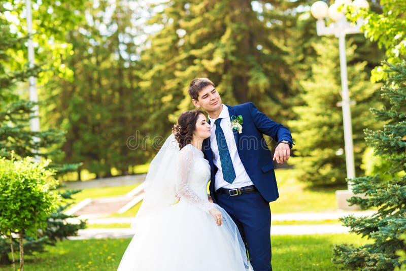 Ευρωπαϊκοί νύφη και νεόνυμφος που αγκαλιάζουν στο πάρκο στοκ εικόνες με δικαίωμα ελεύθερης χρήσης