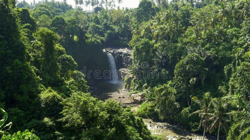 Ευρύ πρωί που πυροβολείται του tegenungan καταρράκτη στο νησί του Μπαλί στοκ φωτογραφία