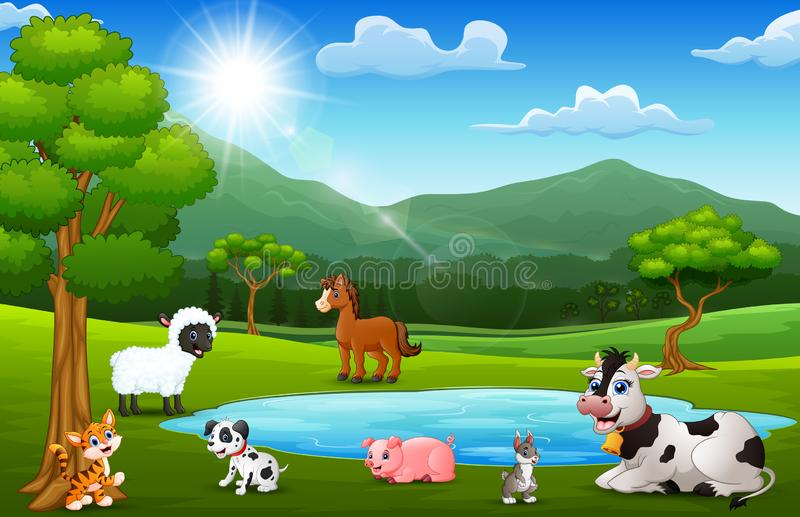 Ευτυχές αγροτικό παιχνίδι ζώων δίπλα στις μικρές λίμνες με το τοπίο βουνών ελεύθερη απεικόνιση δικαιώματος