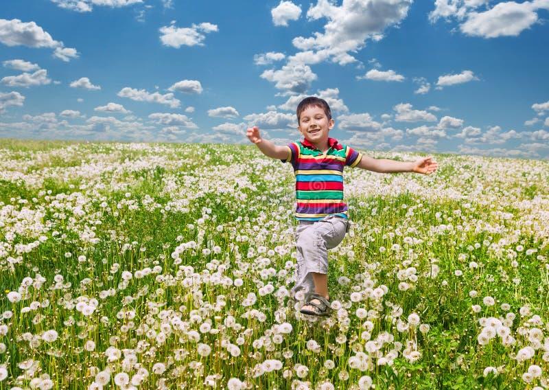Ευτυχές αγόρι με τις πικραλίδες στοκ εικόνες