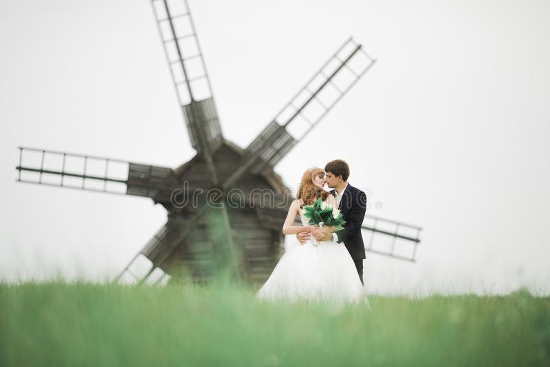 Ευτυχές γαμήλιο ζεύγος που περπατά σε ένα βοτανικό πάρκο στοκ φωτογραφία με δικαίωμα ελεύθερης χρήσης
