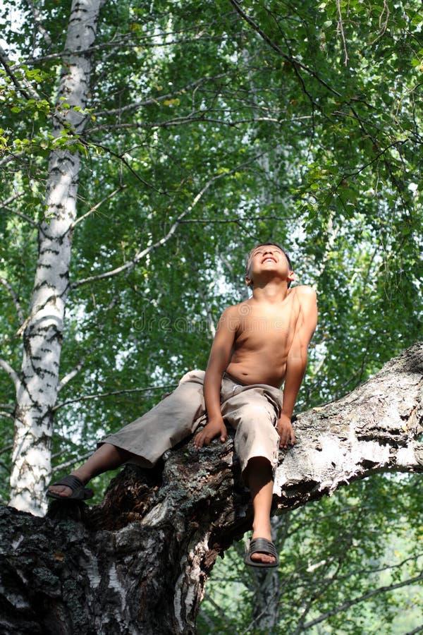 ευτυχές δέντρο αγοριών σ&eta στοκ εικόνα με δικαίωμα ελεύθερης χρήσης