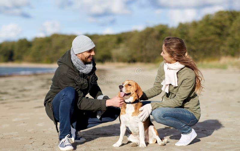 Ευτυχές ζεύγος με το σκυλί λαγωνικών στην παραλία φθινοπώρου στοκ φωτογραφία με δικαίωμα ελεύθερης χρήσης