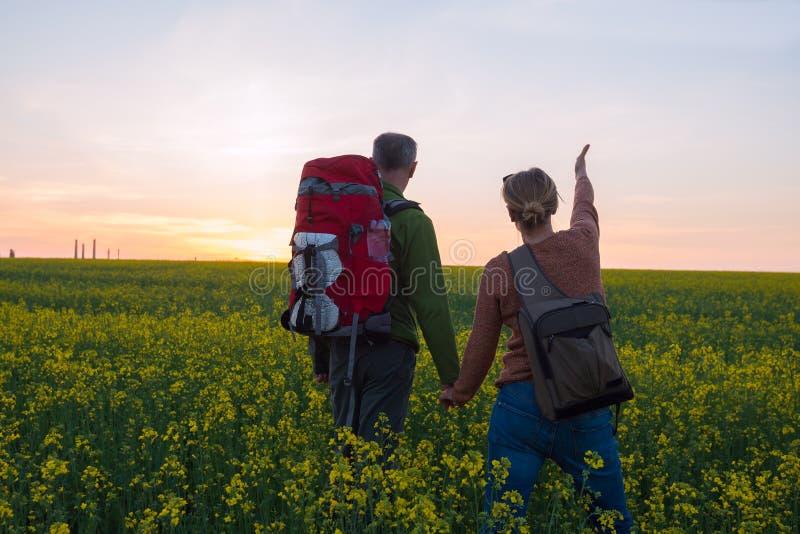 Ευτυχές ζεύγος των ταξιδιωτών σε έναν τομέα των κίτρινων λουλουδιών στοκ εικόνες με δικαίωμα ελεύθερης χρήσης