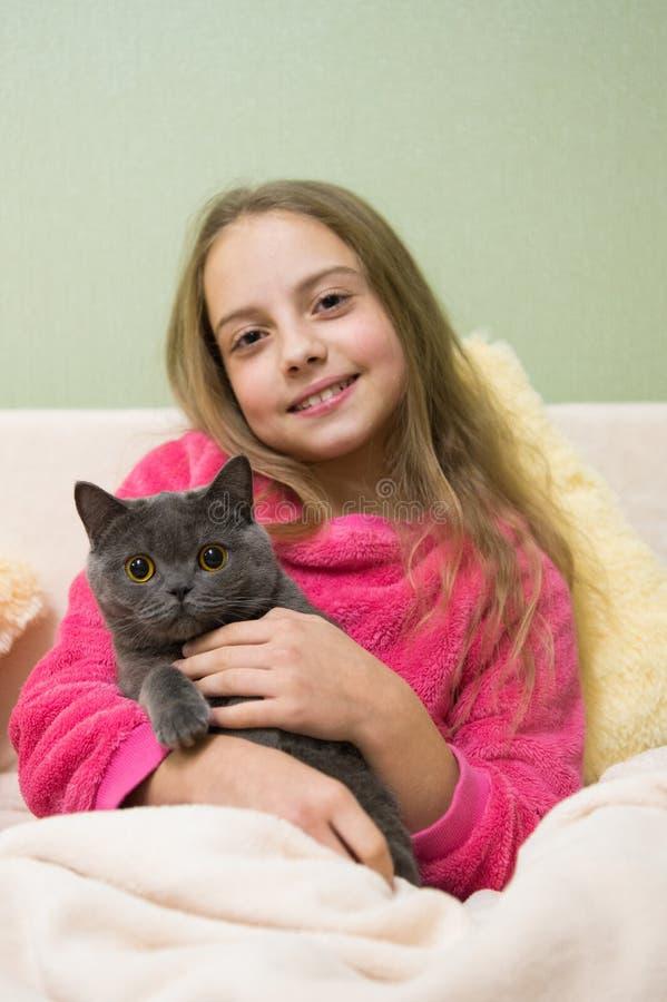 Ευτυχές μικρό κορίτσι με την γκρίζα γάτα στο κρεβάτι Γάτα Chartreux Βρετανική φυλή Shorthair Γκρίζα γάτα Korat στα χέρια του χαμο στοκ φωτογραφία