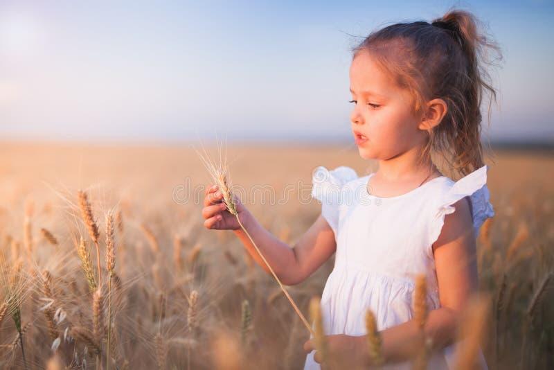 Ευτυχές μικρό κορίτσι υπαίθριο στον τομέα σίτου τελειώστε το καλοκαίρ&iot στοκ εικόνες