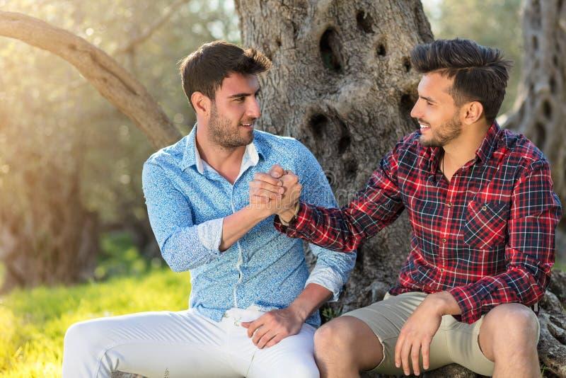 Ευτυχές ομοφυλοφιλικό ζεύγος που αγκαλιάζει στο πάρκο στοκ εικόνα
