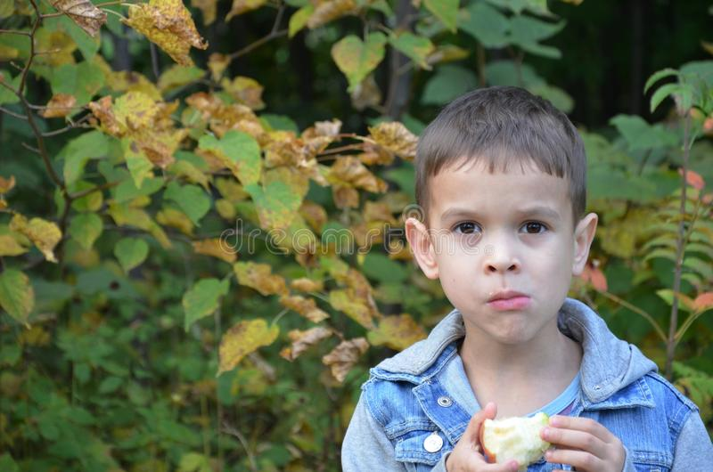 Ευτυχές παιδί που τρώει τα φρούτα ευτυχές χαριτωμένο αγόρι παιδιών που τρώει ένα μήλο σε ένα πάρκο φθινοπώρου στοκ εικόνα