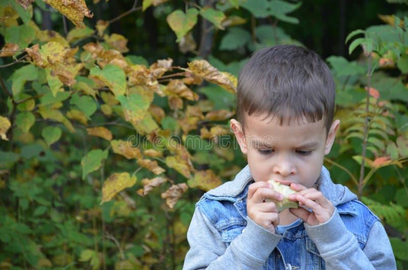 Ευτυχές παιδί που τρώει τα φρούτα ευτυχές χαριτωμένο αγόρι παιδιών που τρώει ένα μήλο σε ένα πάρκο φθινοπώρου στοκ φωτογραφία