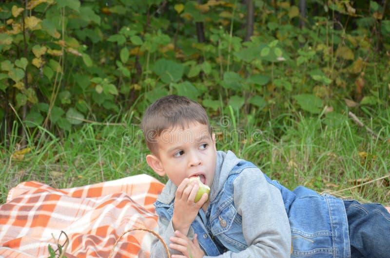 Ευτυχές παιδί που τρώει τα φρούτα ευτυχές χαριτωμένο αγόρι παιδιών που τρώει ένα μήλο βρίσκεται σε ένα coverlet σε ένα πάρκο φθιν στοκ εικόνα με δικαίωμα ελεύθερης χρήσης