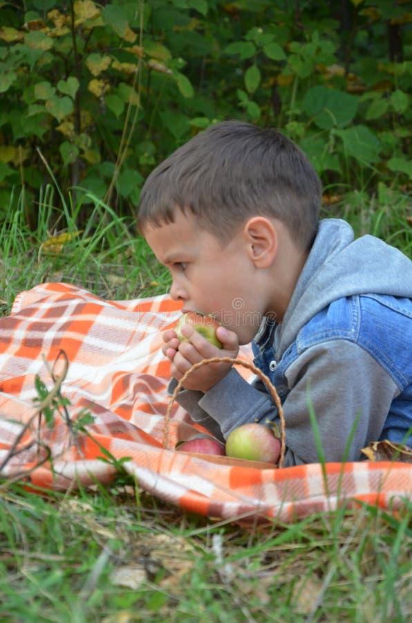 Ευτυχές παιδί που τρώει τα φρούτα ευτυχές χαριτωμένο αγόρι παιδιών που τρώει ένα μήλο βρίσκεται σε ένα coverlet σε ένα πάρκο φθιν στοκ εικόνες