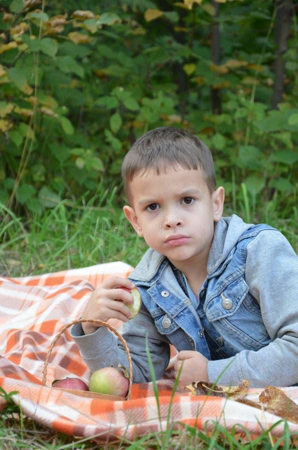 Ευτυχές παιδί που τρώει τα φρούτα ευτυχές χαριτωμένο αγόρι παιδιών που τρώει ένα μήλο βρίσκεται σε ένα coverlet σε ένα πάρκο φθιν στοκ φωτογραφία