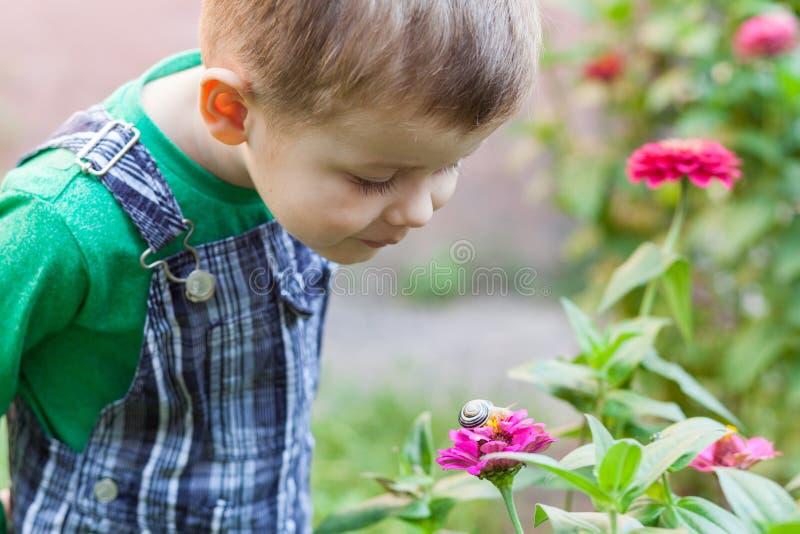 Ευτυχές παιχνίδι μικρών παιδιών στο πάρκο με το σαλιγκάρι στο χρόνο ημέρας κατσίκι που παρατηρεί το &s στοκ φωτογραφίες με δικαίωμα ελεύθερης χρήσης