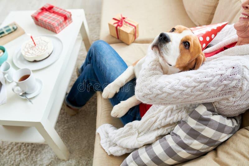 Ευτυχές σκυλί με τον ανώτερο ιδιοκτήτη στοκ φωτογραφία