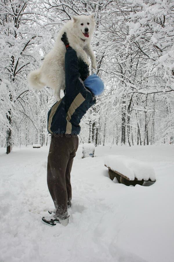 Ευτυχές σκυλί στο χιόνι στοκ φωτογραφία με δικαίωμα ελεύθερης χρήσης