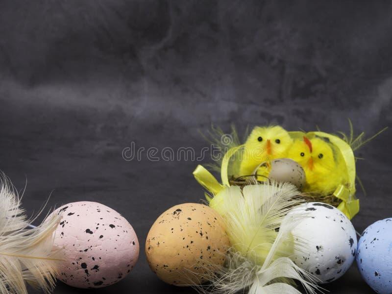Ευτυχές υπόβαθρο Πάσχας Αυγά Πάσχας και κίτρινα αυγά και κοτόπουλο νεοσσών ως σύμβολο Πάσχας, χαιρετισμοί στοκ εικόνες με δικαίωμα ελεύθερης χρήσης