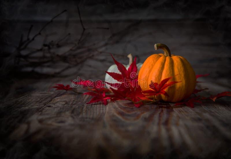 Ευτυχές φίλτρο ύφους HalloweenRetro Instagram στοκ εικόνα