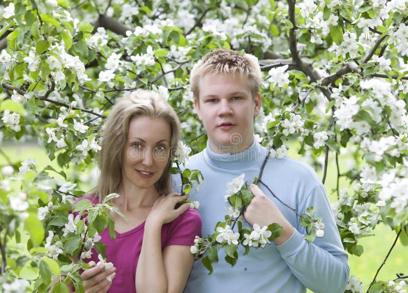 Ευτυχής άνδρας και η γυναίκα στα ανθίζοντας Apple-δέντρα στοκ φωτογραφία με δικαίωμα ελεύθερης χρήσης