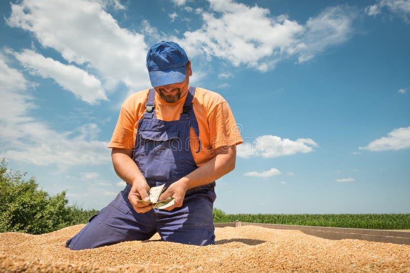 Ευτυχής αγρότης στοκ εικόνες